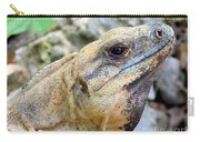 Iguana Of The Uxmal Pyramids In Yucatan Mexico Carry-all Pouch