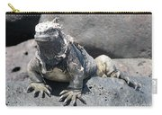 Iguana Or Prehistory Survivor Carry-all Pouch