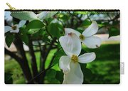 Illinois Capitol Dogwood Carry-all Pouch