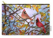 Illinois Cardinals  Carry-all Pouch