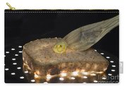 Illuminated Bread Carry-all Pouch