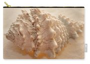 Illumination Series Sea Shells 11 Carry-all Pouch