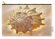 Illumination Series Sea Shells 20 Carry-all Pouch