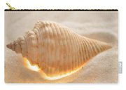 Illumination Series Sea Shells 8 Carry-all Pouch