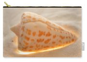 Illumination Series Sea Shells 9 Carry-all Pouch