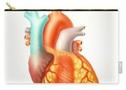 Illustration Of The Human Heart Carry-all Pouch