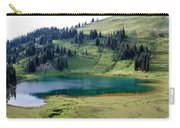 Image Lake  Carry-all Pouch
