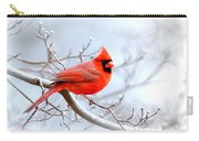 Img 2259-22 - Northern Cardinal Carry-all Pouch