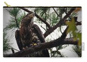 Immature American Bald Eagle Carry-all Pouch