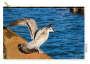 Immature Herring Gull At The Harbour Carry-all Pouch