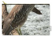 Immature Night Heron Carry-all Pouch