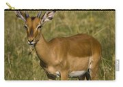 Impala Female Carry-all Pouch