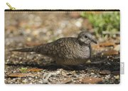 Inca Dove Carry-all Pouch