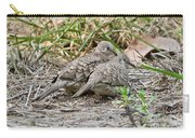 Inca Doves Carry-all Pouch