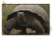 Indefatigable Island Tortoise Galapagos Carry-all Pouch