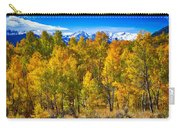 Independence Pass Autumn Colors Carry-all Pouch