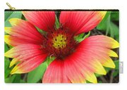 Indian Blanket Carry-all Pouch