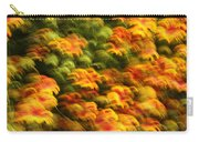 Indian Blanket Psychedelic Carry-all Pouch