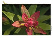 Indian Paintbrush Closeup Carry-all Pouch