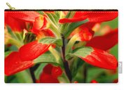 Indian Paintbrush I I Carry-all Pouch