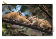 Indian Palm Squirrel Carry-all Pouch