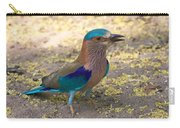 Indian Roller Carry-all Pouch