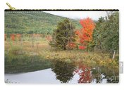 Indian Summer Acadia Park Carry-all Pouch