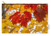 Indian Summer Trees Carry-all Pouch