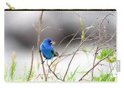 Indigo Bunting - 17 Carry-all Pouch