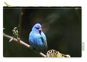 Indigo Bunting - Img-428-003 Carry-all Pouch