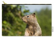 Inquestivie Squirrel Carry-all Pouch
