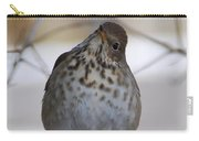 Inquisitive Hermit Thrush Carry-all Pouch