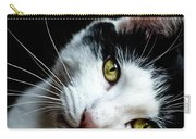 Inquisitive Kitty Carry-all Pouch