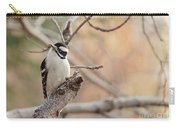 Inquisitive Woodpecker Carry-all Pouch