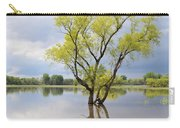 Iowa Flood Plains Carry-all Pouch