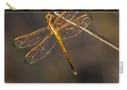 Iridescent Dragonfly Wings Carry-all Pouch