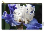 Stairway To Heaven Iris Carry-all Pouch