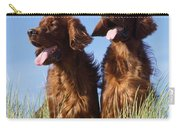 Irish Red Setter Dog Carry-all Pouch