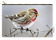 Irruptive Bird Common Redpoll Carry-all Pouch