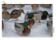 Isabella's Ducks Carry-all Pouch
