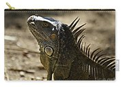 Island Lizards Three Carry-all Pouch