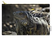 Island Lizards Two Carry-all Pouch