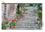 Italian Stairway Carry-all Pouch