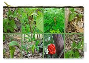 Jack-in-the-pulpit Wildflower    Arisaema Triphyllum Carry-all Pouch