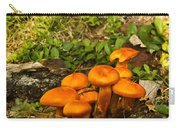 Jack Olantern Mushrooms 22 Carry-all Pouch