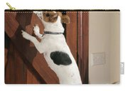 Jack Russell Terrier Gets Paper Carry-all Pouch