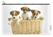 Jack Russell Terrier Puppies Carry-all Pouch