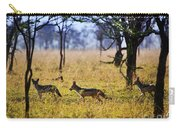 Jackals On Savanna. Safari In Serengeti. Tanzania. Africa Carry-all Pouch