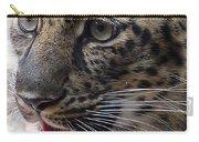 Jaguar-09498 Carry-all Pouch