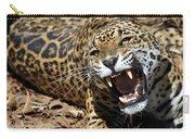 Jaguar Intensity Carry-all Pouch